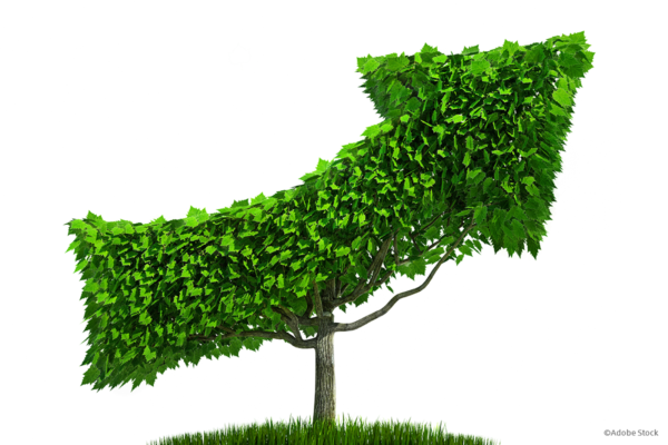 Nachhaltigkeit in der Geldanlage