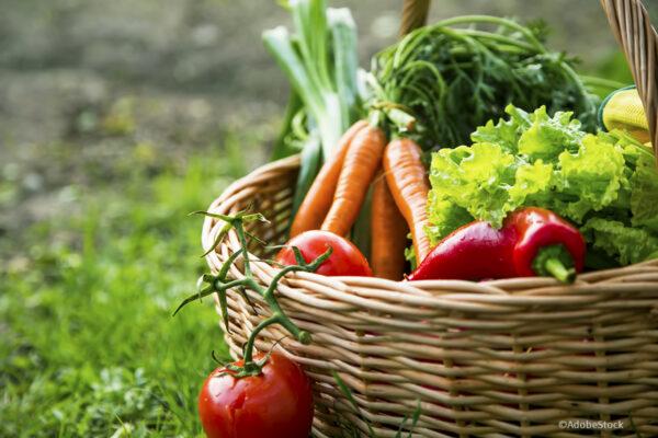 Mit der Ernährung zur Klimawende beitragen
